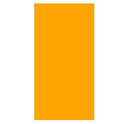 phoenix stone logo